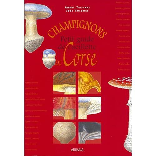 Champignons - Petit Guide de Cueillette en Corse