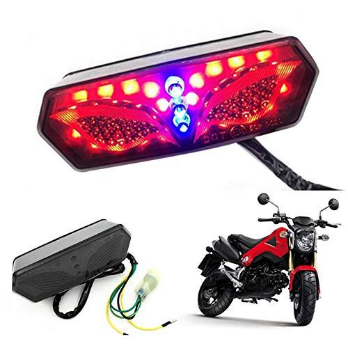 Baoblaze Feux LED de Plaque dImmatriculation de Moto Feux Arri/ère avec 3 Lampes Moto