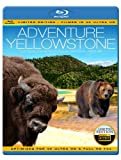 ADVENTURE YELLOWSTONE - The World's Most Popular National Park (Limited Edition - Filmed in 4K ULTRA HD) [Blu-ray] [NTSC] [Region Free] [UK Import]