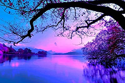 Nuolan Art - PURPLE MORNING Modern Landscape Canvas Print Wall Art - Framed REady to Hang Wall Decor - Home Gifts - UK-P1L4060-003
