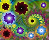 PixTopper Fractal flowers 46 , Paper-Medium ( 36 in x 29 in ) best price on Amazon @ Rs. 2970