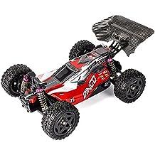 Coche Rc Buggy Dingo Remo 1:16 | Tracción 4x4 | 40 km/h