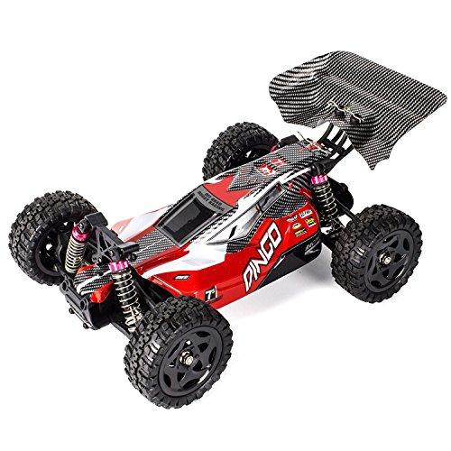 RCTecnic Coche Teledirigido Buggy Dingo Remo 1:16 Tracción 4x4 | Alta Velocidad 40 km/h Control Remoto | Coche RC Radiocontrol con Bateria Recargable para Niños/Adultos