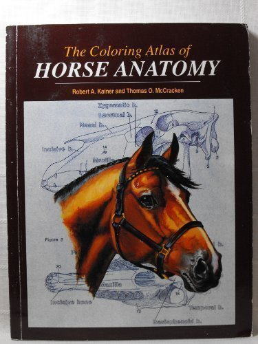 Coloring Atlas of Horse Anatomy by Robert Kainer (1994-04-30)