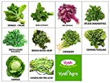 #7: Vysh Agro 10 Varieties of High Quality Leafy Vegetable Seeds for Terrace and Kitchen Garden (800+ Seeds)