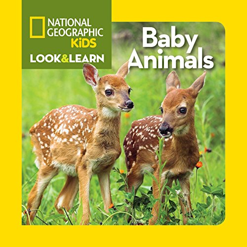 Look and Learn: Baby Animals (Look&Learn) por National Geographic Kids