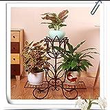 FKFlower Fioriera per fiori Stand Cremagliera a fiori a tre piani/rack di ferro a più strati di rafano verde/cremagliera da pavimento piatto da pavimento al coperto da fiori