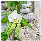 levandeo Glasbild 30x30cm Weiße Orchidee Bambus Wellness Wandbild Wanddeko Dekoration
