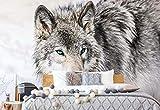 Wolf Tier - Wallsticker Warehouse - Fototapete - Tapete - Fotomural - Mural Wandbild - (2940WM) - XL - 208cm x 146cm - VLIES (EasyInstall) - 2 Pieces