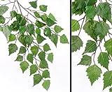Wald Birkenbaumzweig mit 48 grünen Blättern, Gesamtlänge inkl. Stiel von ca. 64cm - künstliche Blumen Kunstblumen Dekoblumen Kunstpflanzen