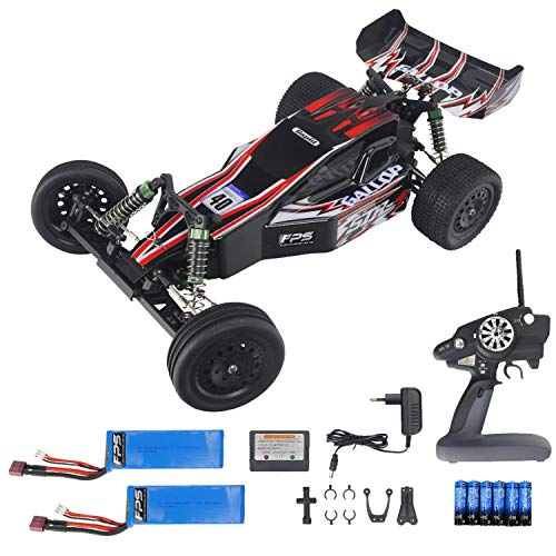 FPS RTR Bundle: Rayline FR03 RC Buggy 1:10 Offroad bis 48 km/h - 2WD - Heckantrieb, 47cm, Differential, 2.4G Fernbedienung LCD, inkl. 2X Akku + 6X AA 47 Lcd