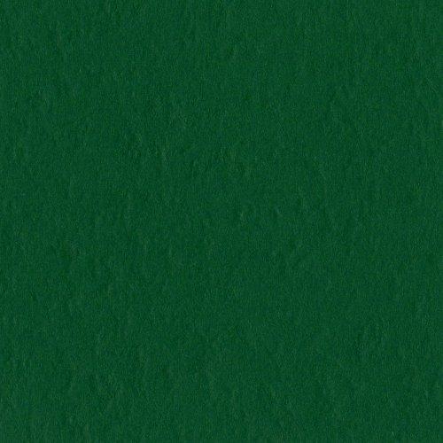 Bazzill Classic Cardstock (Bazzill Basics Paper T19-5414 Prismatic Karton, 25 Blatt, 30,5 x 30,5 cm, Classic Green)