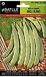 Semillas Leguminosas - Judía de enrame Bacle (Iluro) - Batlle