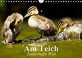 Am Teich. Zauberhafte Welt (Wandkalender 2019 DIN A4 quer): Bezaubernde Pflanzen und Tiere am Wasser (Monatskalender, 14 Seiten ) (CALVENDO Natur)