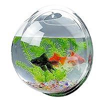 Candora™ Creative Acrylic Hanging Wall Mount Fish Tank Bowl Vase Aquarium Plant Pot Bowl Bubble Aquarium Decor