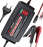 LTS 12V 5A Batterieladegerät - Universell Autobatterie Ladegerät Multifunktion für KFZ PKW Auto Motorrad(EU Stecker)