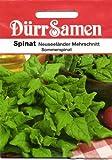 Spinat Neuseeländer von Dürr-Samen