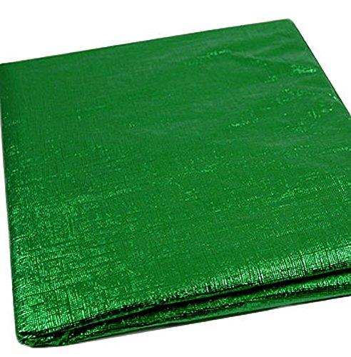 Grün Metallic Tischdecke–Tischdecke, rund Durchmesser. 152cm (152,4cm) Weihnachten abwischbar Vinyl (Grüne Tischdecke Vinyl)