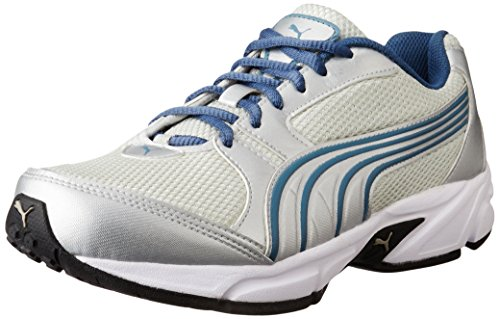 Puma Men's Strike Ii Dp Grey Violet, Puma Silver and Bering Running Shoes - 7 UK/India (40.5 EU)