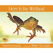 Here Is the Wetland (Web of Life) by Madeleine Dunphy (2007-06-21)