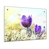 Bilderdepot24 Memoboard 60 x 40 cm, Pflanzen - lila Feldblumen - Memotafel Pinnwand - Blatt - Gras - bunt - Garten - Blume - Blumenwiese - Sommer - Pflanzenmotiv - Natur - Blumenbild - Glasbild -