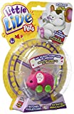 Little Live Pets Pippeez, Spielzeug-Maus (Famosa 700013199), zufällige Auswahl: Modelle/Farben
