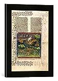 Gerahmtes Bild von AKG Anonymous 'Damwild in Landschaft / Livre de Chasse', Kunstdruck im hochwertigen handgefertigten Bilder-Rahmen, 30x40 cm, Schwarz matt