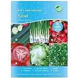 Pack de graines 6 légumes pour potager