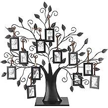 Dewin Marco de Fotos de árbol - 6/12 Árbol de la exhibición de los