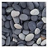 Beach Pebbles schwarz mit beigen Akzenten, dekorativer Zierkies für den Garten, 8-16mm, 20 kg Sack, Kieselsteine