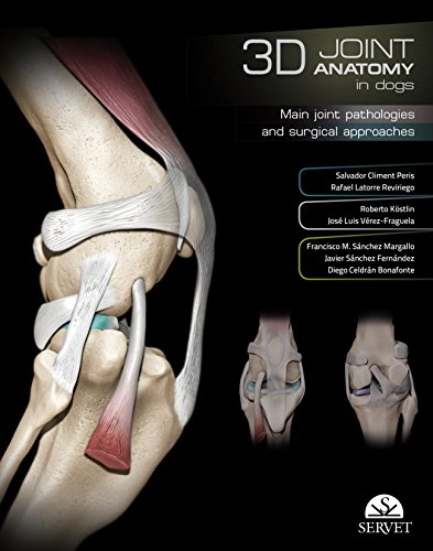 3D Joint Anatomy in dogs - Veterinary books - Editorial Servet por Aa.Vv.