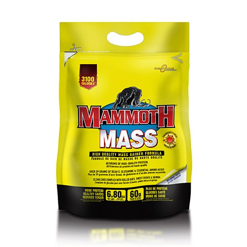 interactive-nutrition-453-kg-active-mammoth-mass-vanilla-supplement-by-inter-active-nutrition