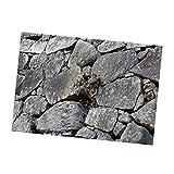 LOVIVER Etiqueta Engomada Del Cartel Del Fondo Del Acuario De La Tortuga De Sandbeach Stone Escargots - Piedra 61x30cm, como se describe