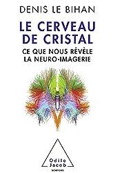 Le Cerveau de cristal: Ce que nous révèle la neuro-imagerie