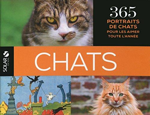 365 Chats