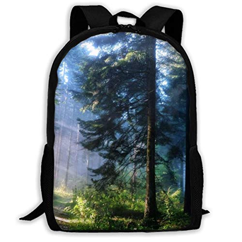 sghshsgh Rucksack für Hochschule,Forest Morning Large Nature Trees Sunrise Foggy Woods Landscape School Backpack Oxford Casual Outdoor Rucksack for Teen Boys Girls College Student, Multipurpose Shoul - Sunrise Tree
