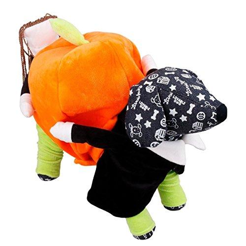 tiges Halloween Hundekostüm Hundemantel (XL) (Mais Hund Kostüme)
