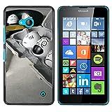 OB-star ( Huevos divertido ) NOKIA Lumia 640 Impreso Colorido Protector Duro Espalda Funda Piel De...