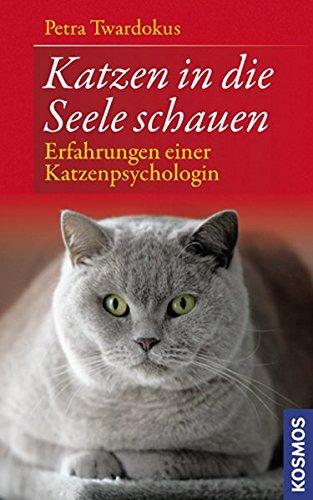Katzen in die Seele schauen: Erfahrungen einer Katzenpsychologin