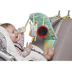 centro de actividades para el coche play & kick Taf Toys