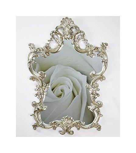 Lnxp XXL Wandspiegel Antik Barock Rokoko 76x110cm in Silber UVP 699€ Spiegel Neu Woe