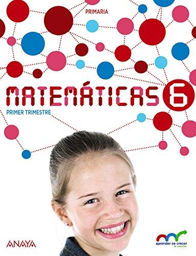 Matemáticas 6 (con resolución de problemas 6) (aprender es crecer en conexión)