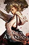 Air Awakens (Air Awakens Series Book...