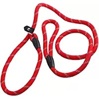 Westeng Hundeleine, Nylon, Trainingsleine, verstellbare Schlaufe, 1,2 m, rot
