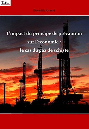 L'impact du principe de précaution sur l'économie : le cas du gaz de schiste (Série énergie t. 1) por Théophile  ARNAUD