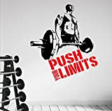 Best Motivational Wall Decals - Push your Limits... Premium Motivational Wall Art Decal Review