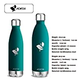 Aorin 500ml Trinkflasche (Blauer See) - 6