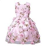 Amlaiworld Mädchen Blumen drucken Party Kleider Baby Sommer Seidenblume Dekoration Kleid Ärmellos Geburtstag Hochzeit Mode Kleidung Schön Geschenke Für Kinder, 5-10 Jahren (7 Jahren, A - Rosa)