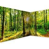 murando - Eckfototapete Wald 550x250 cm - Vlies Tapete - Moderne Wanddeko - Design Tapete - Wandtapete - Wand Dekoration - Landschaft Natur grün Baum b-B-0383-a-a