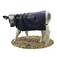 AniMac Canvas Calf Blanket (Medium 2